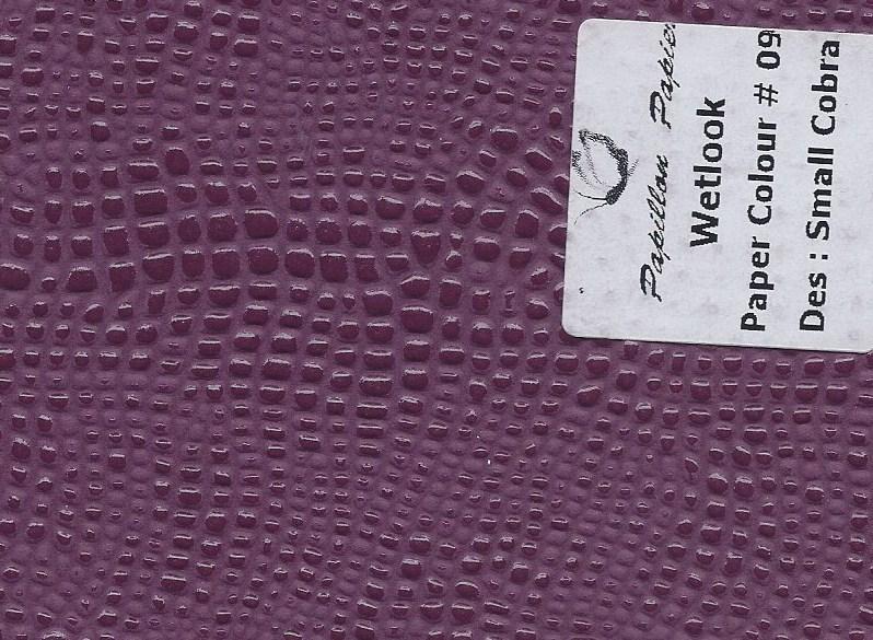 Wetlook_-_Small_Cobra_-_Paper_#_09
