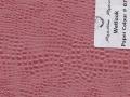 Wetlook_-_Small_Cobra_-_Paper_#_07